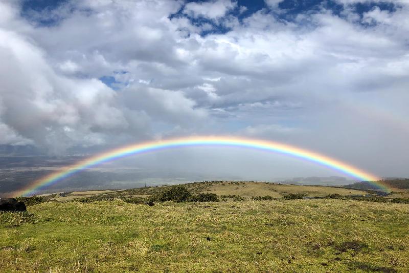 Un arcobaleno, per sorridere ancora
